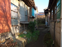Hadano#97 (tetsuo5) Tags: 神奈川県 秦野 末広町 kanagawa hadano suehirocho dmcgx8 dgsummilux15mmf17