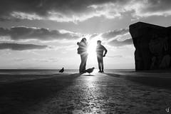 (tzevang.com) Tags: sea seascape silhouette greece bw bythesea bwseascape beach bird fujifilm shadow people bnw promenade enjoy sky sun sunset