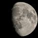 Waxing Moon 200204 026.jpg