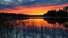 Sunset (Stefano Rugolo) Tags: stefanorugolo pentax pentaxk5 smcpentaxda1855mmf3556alwr ricohimaging kmount kitlens sunset 169 lake reflections silhouettes sky clouds water colors sweden hälsingland reeds red
