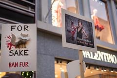 For Fox Sake (Silver Machine) Tags: london mayfair streetphotography street candid streetprotest protest march antifur fashionantifur placard designerlabels shops fujifilm fujifilmxt10 fujinonxf35mmf2rwr