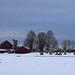 Amish Farm #2