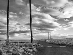 (el zopilote) Tags: albuquerque blackandwhite bw newmexico blancoynegro clouds landscape lumix noiretblanc nb bn powerlines westmesa g9 monochrome m43 leicadgsummilux25mmf14