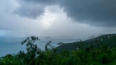 Caribbean Deluge
