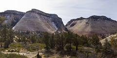 Checkerboard Mesa, Zion National Park, Utah (swissuki) Tags: checkerboard mesa mountain zion national nature park landscape largelandscape utah ut