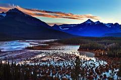 Evening, North Saskatchewan Crossing, Banff National Park (klauslang99) Tags: klauslang canada canadian rockies rocky mountains jasper national park alberta north saskatchewan crossing evening sunset landscape nature