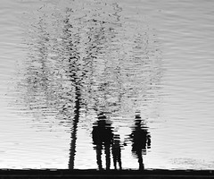 The Family Tree (Edinburgh Photography) Tags: nature outdoors tree reflections water winter inverleith pond edinburgh nikon d7000 family people silhouettes minimalism