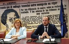 Comisión de Violencia de Género