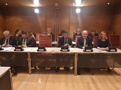 Comisión de Suplicatorios