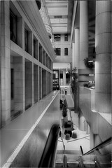 I'll Take the Stairs (Peter Polder) Tags: australia architecture bw building people interior monochrome office sydney urban
