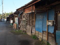 Hadano#100 (tetsuo5) Tags: 神奈川県 秦野 末広町 kanagawa hadano suehirocho dgsummilux15mmf17 dmcgx8