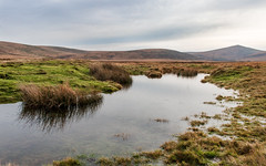 Dartmoor in early winter (Keith now in Wiltshire) Tags: dartmoor nationalpark devon water pond hill grass moor landscape sky steeperton tor taw valley reflection desolation