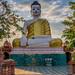 2019 - Cambodia - Angkor Ban - 36
