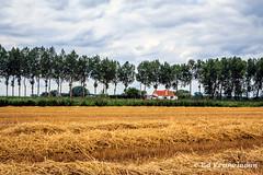 The Zeeland Flemish country in the Netherlands. (Ed Francissen) Tags: agriculture assenede belgië franfoto grotegeul landbouw meetjesland oudepolders rodegeul vlaanderen oldpolders oldseadikes