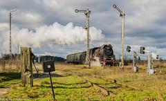 Ol49-59 (Jakub Łukaszewski) Tags: ol49 ol4959 parowóz steamlocomotive dampflok parowozowniawolsztyn osobowy kolejewielkopolskie nowawieśmochy wielkopolskie zima winter poland train trainspotting