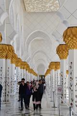 D56_6645 (Frank Berbers) Tags: sjeikzayedmoskee abudhabi vae verenigdearabischeemiraten moskee مسجدالشيخزايد scheichzayidmoschee moschee sheikhzayedmosque nikond5600 mosque mosquéecheikhzayed mosquée 2020 architectuur architecture architektur