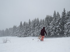 rodeln an der Schmücke (germancute ***) Tags: winter nature outdoor thuringia thüringen germany germancute deutschland landscape landschaft