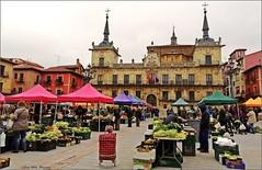 El mercado del miércoles - Plaza Mayor - León (Luisa Gila Merino) Tags: mercado leónciudad verduras sombrillas arquitectura gente callejeando personas ciudad ventanas balcones farolas colores edificios hortalizas