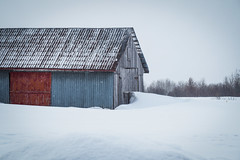 (Marie-Laure Even) Tags: wood corrugated landscape québec northamerica nature olympusem5markii snow red countryside blue wild roadtrip march travel marielaureeven tree wooden barn canada winter 2019 wilderness field amériquedunord arbre bleu bois campagne champ hiver mars neige paysage rouge tôleondulée voyage природа saguenay
