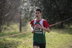 Marco Pallotta