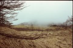 (✞bens▲n) Tags: pentax lx velvia 100f carl zeiss 35mm f24 flektogon slide film positive japan nagano mountains fog nature trees