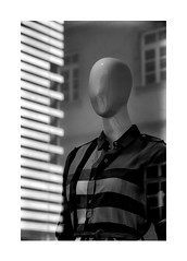 not a Scottish woman (Armin Fuchs) Tags: arminfuchs lavillelaplusdangereuse würzburg shop stripes diagonal shirt windows petrinihaus
