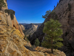 Zion West Rim Trail (swissuki) Tags: zion westrim national park landscape largelandscape mountain nature ut utah