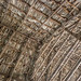 Tobacco Barn Ceiling (Detail) 02