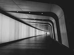The Light Tunnel (davepickettphotographer) Tags: lighttunnel stpancras uk london britain underground station subway urban kingscross railways transport hub stpancrasinternational londontransport lt yorkway londonboroughofcamden city cities blackandwhitephotography railwaystation camden rail londonunderground