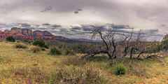 Stable Conditions to the East South East (dan@propeakphotography.com) Tags: america arizona bearmountain clouds clover coconinonationalforest coloradoplateau deadtree dramatic geologicformation green landscape loycanyon nature northamerica redcanyon redrocksecretmountainwildernessarea rural sedona spring travel traveldestination travelandtourism trees usa unitedstates unitedstatesofamerica