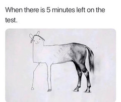 When there is 5 minutes left on the test (gagbee18) Tags: animals aww drawing funny horse sketch test