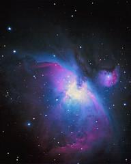 M42 - Orion Nebula (Jun C Photography) Tags: m42 orion nebula asi294mcpro asiair zwo messier 42 ngc 1976 astrophotography night sky