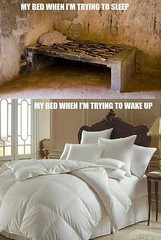 My bed when I'm trying to wake up (gagbee18) Tags: aww bed funny memes reality sleep wakeup