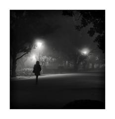 Sevilla (jlavila) Tags: 2020 bruma fog fuji fujifilmx igjlavila2018 niebla noche parque rio sevilla spain