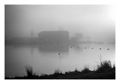 FILM - Over the water (fishyfish_arcade) Tags: 35mm analogphotography bw blackwhite blackandwhite filmphotography filmisnotdead hp5 istillshootfilm monochrome nikkor2880f3556afd nikonf80 analogcamera film ilford mist mono rothervalley lake