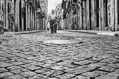 Mann (rainerneumann831) Tags: street urban bw blackwhite streetscene ©rainerneumann city blackandwhite monochrome lisboa candid streetphotography mann lissabon pflaster
