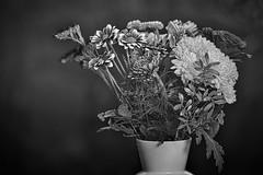 "The ""get better soon"" bouquet (2) (Phancurio) Tags: flowers bouquet vase grayscale"