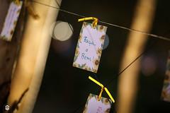 CRÉDITO - DA FOTO (ARES SOARES) - 31 (uniforcomunica) Tags: projeto florescer meditação pinturas universidade de fortaleza campus relaxamento ares soares area verde campo