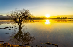 _DSC0051b (pacogranada) Tags: sunrise amanecer sol rayosdesol lago lake dam lac granada andalucia andalusia españa spain espagne reflejos reflections niebla fog haze dawn