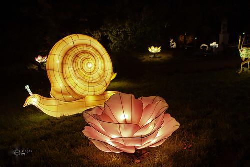 Les lumières légendaires de Chine