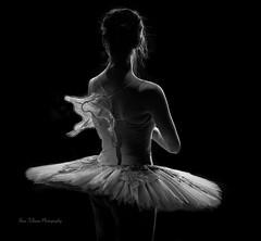 """Waiting in the Wings"" (Bina Fellowes) Tags: blackandwhite ballerina theatre dancer lowkey bnw sleepingbeauty tutu rimlighting geraldinelambdanceschool kenyabevan"