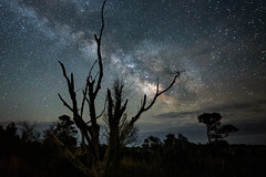 Milky Way (Dante Fratto Photography) Tags: assateagueisland astro astrophotography maryland milkyway ninght space stars astronomy nightphotography wwwdantefrattocom wwwdantefrattophotographycom