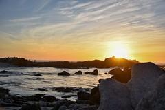 Golden hour (davidjnear) Tags: golden hour pacificgrove monterey california coast ocean beach nikon d3400 photography