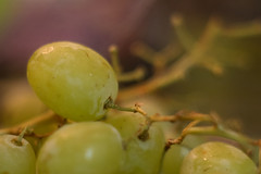 Snacking from the fridge (OzzRod) Tags: pentax k1 ennar10cmf25 projectorlens fruit grapes macro bokeh