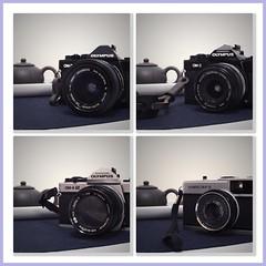 My Olympus cameras (a.pierre4840) Tags: olympus omd em10 micro43 cmount schneider kreuznach xenon 25mm f095 om4ti om3 om2sp olympustrip35 collage phototasticcollage camera zuiko 2848mm 24mm 100mm artfilter