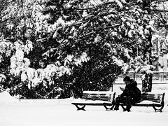 texto mania (photosgabrielle) Tags: photosgabrielle bwphotography bw bwmontreal winter neige snow noiretblanc noirblanc urbain personnage people hiver montreal