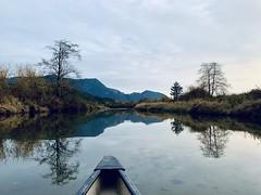 Pitt Lake BC (joannefunke) Tags: nature naturalworld natural plants earth britishcolumbia water lake river greenwater rocks canoeing landscape explore world travel outside