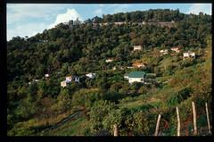 ... (tkachenko.as) Tags: autumn newafon film kodak e100vs abkhazia nature takumar2835 vintagelens