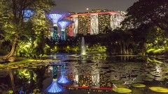 Fireworks & Moon Reflections in Lily Pond [In Explore 7Feb2020] (yoosangchoo) Tags: singapore bay the by gardens pond lily fireworks light reflections night moon crescent supertrees sands marina