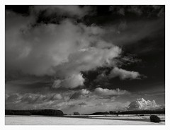 Winter Sky in B/W (II) (Maximilian Busl) Tags: landscape sky clouds dramatic blackandwhite hasselblad 500cm cfv50c oberfranken gefell thüringen deutschland heimat homeland